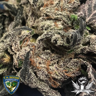 Ph down BAC 1 litre