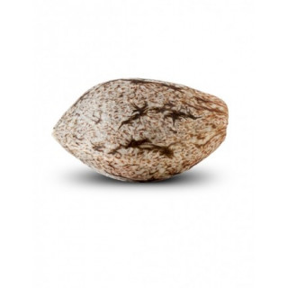 Set de rechange CRAFTY - Storz&Bickel
