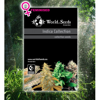 Pack intracteur + extracteur air 107 m3/h - Ø 100 mm