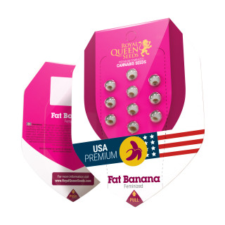 Kit irrigation 10 plantes - SIROFLEX