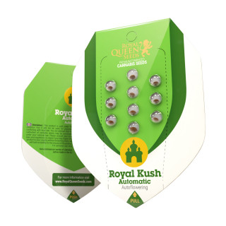 Power Roots Plagron 1 litre