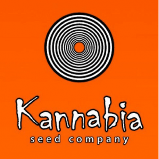 Spot led 36 X 3W full spectrum + IR - agrolight led